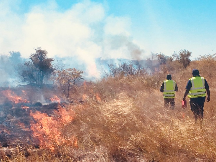ASRAC's Otto Campion and Bayo Taylor leading an Indigenous burning demonstration at a field site adjacent to the Nxai Pan National Park in northwest Botswana.