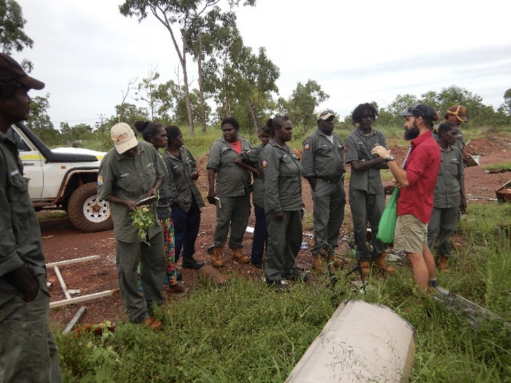 In April, thirteen rangers completed ChemCert and Treat Weeds units with Charles Darwin University.
